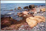 Baltské moře, Jasmund, národní park, Německo