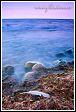 Labutí pírko v Baltském moři