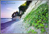 Jasmund, národní park, Německo, bylinná kolonizace křídových útesů