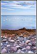 Baltské moře s labutěmi