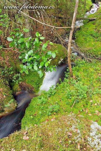 Lesní kaskádka v národním parku Tiveden, Švédsko