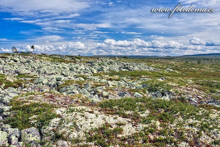 Kamenitá krajina Fulufjälletského národního parku u jezera Litle Rörsjön