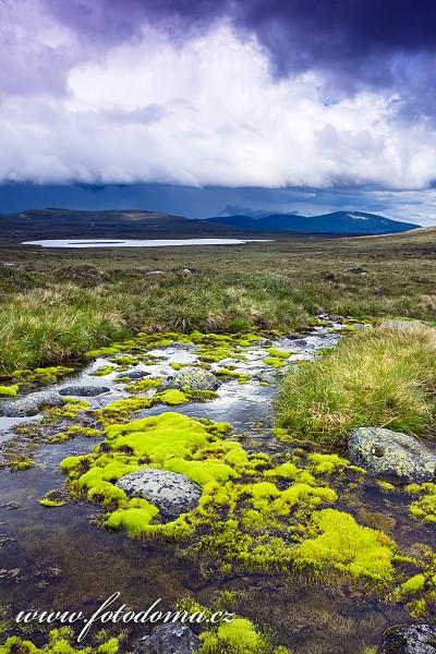 Krajina s jezerem Lille Grøvelsjøen v národním parku Femundsmarka