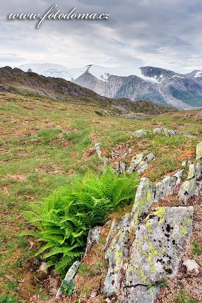 Hory kolem údolí Glomdalen s horou Snøtinden, Národní park Saltfjellet-Svartisen, Norsko