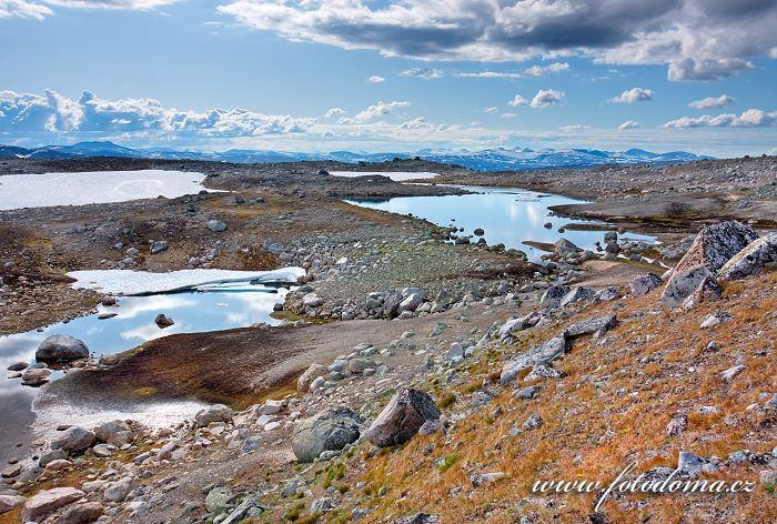 Jezírka poblíž jezera Lønstindvatnet. Národní park Saltfjellet-Svartisen, kraj Nordland, Norsko