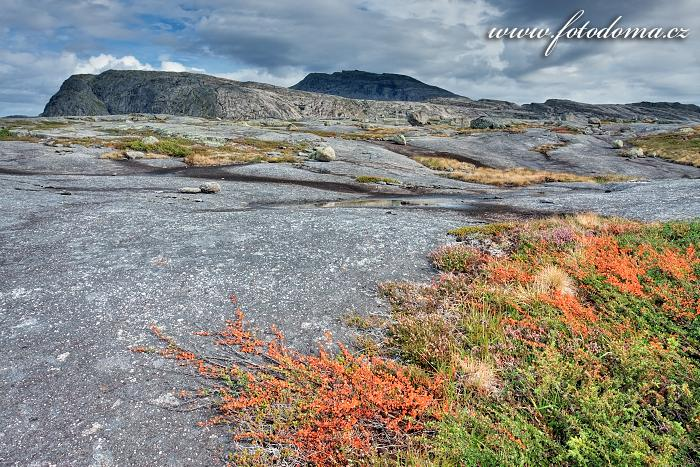 Krajina poblíž Bajep Tjuorvvomoajvve, národní park Rago, kraj Nordland, Norsko