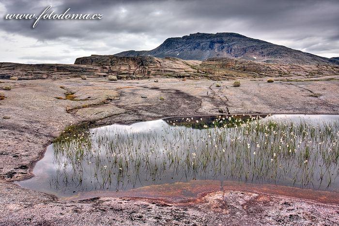 Jezírko s vrcholem Snøtoppen, národní park Rago, kraj Nordland, Norsko