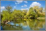 Řeka Morava, Rohatec