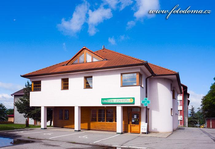 Penzion a lékárna Arnika, Horní Planá