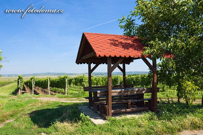 Altánek ve vinohradech, Rakvice