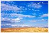 Krajina jako pozadí