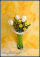 Kytice s tulipány ve váze