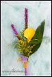 Květinová vazba se žlutou kalou