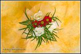 Květinová vazba s růžemi