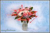 Květiny - aranžmá