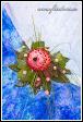 Květinové aranžmá s proteou