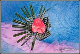 Květinové aranžmá s anthurií