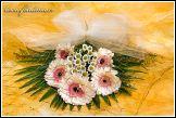 Květinové aranžmá s gerberami
