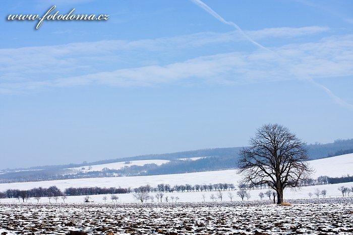 Zimní krajina u Kněždubu, Bílé Karpaty