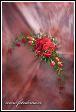 Svatební kytice z rudých růží pro nevěstu