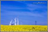 Jaderná elektrárna Dukovany a řepkové pole