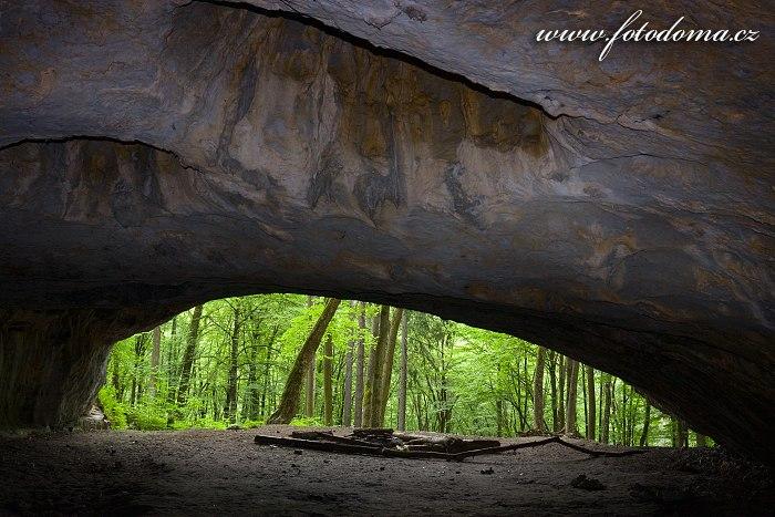Jeskyně Pekárna, národní přírodní památka, Moravský kras