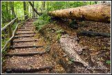 Turistický chodník, Ojcowski národní park, Ojcowski Park Narodowy, Polsko
