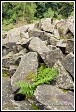 Kamenné pole na vrchu Lysica, masiv Swiety Krzys, Swietokrzyski národní park, Swietokrzyski National Park, Polsko