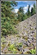 Kamenné pole na vrchu Lysica, masiv Swiety Krzys, Swietokrzyski národní park, Swietokrzyski Park Narodowy, Polsko