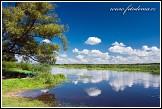 Řeka Narew u vesnice Bokiny, Narwianski národní park, Narwianski Park Narodowy, Polsko
