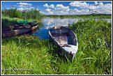 Loďky a řeka Narew u vesnice Bokiny, Narwianski národní park, Narwianski Park Narodowy, Polsko