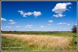 Krajina u vesnice Bokiny, Narwianski národní park, Narwianski Park Narodowy, Polsko