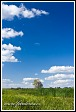 Mokřiny u vesnice Bokiny, Narwianski národní park, Narwianski Park Narodowy, Polsko