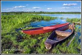 Čluny a řeka Narew u vesnice Waniewo, Narwianski národní park, Narwianski Park Narodowy, Polsko