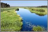 Řeka Biebrza u Dolistowo Stare, Biebrzanski národní park, Biebrzanski Park Narodowy, Polsko