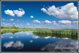 Řeka Biebrza u Jasionowo, Biebrzanski národní park, Biebrzanski Park Narodowy, Polsko