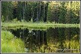 Jezero Suchar Rzepiskowy, Wigierski Park Narodowy, Wigierski národní park, Polsko