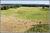 Zemědělská krajina u jezera Wigry, Bryzgiel, Wigierski Park Narodowy, Wigierski národní park, Polsko