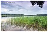 Jezero Linkmenas v blízkosti Ginučiai, Aukštaitijos národní park, Aukštaitijos nacionalinis parkas, Litva