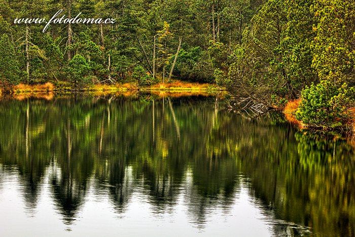 Velké mechové jezírko, Národní přírodní rezervace  Rejvíz, CHKO Jeseníky, okres Jeseník