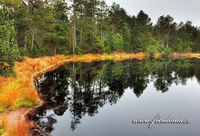 Velké mechové jezírko, Národní přírodní rezervace  Rejvíz, CHKO Jeseníky, okres Jeseník, Olomoucký kraj
