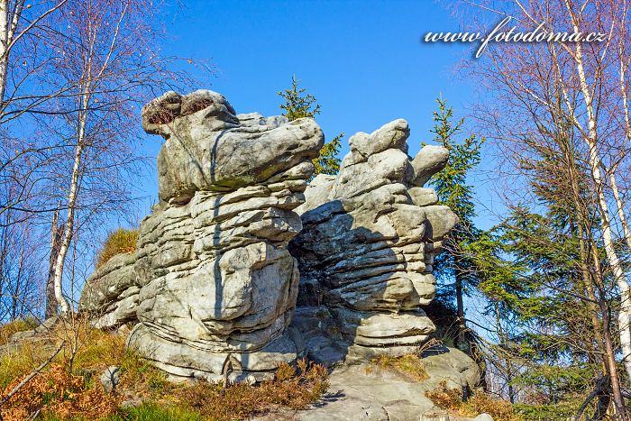 Skalní útvar, Skalniak, Lisi Grzbiet, Národní park Gór Stołowych