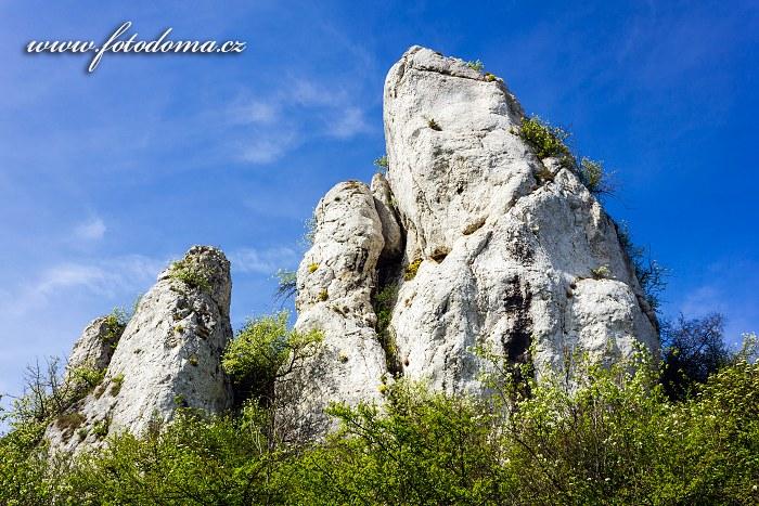 Kočičí kámen, Národní přírodní rezervace Tabulová, Růžový vrch a Kočičí kámen, CHKO Pálava, okres Břeclav, Jihomoravský kraj, Česká republika