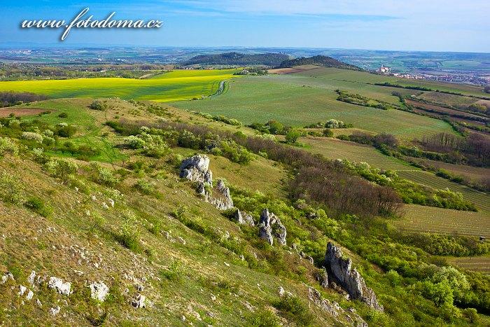 Pohled ze Stolové hory k jihu, CHKO Pálava, okres Břeclav, Jihomoravský kraj, Česká republika