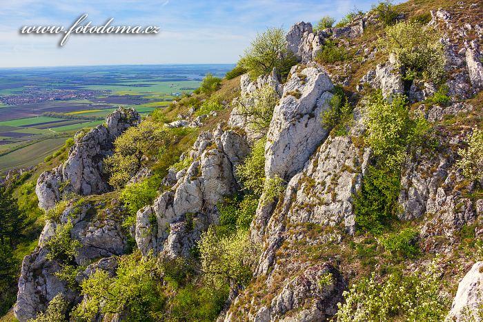 Pohled ze Stolové hory k západu, CHKO Pálava, okres Břeclav, Jihomoravský kraj, Česká republika