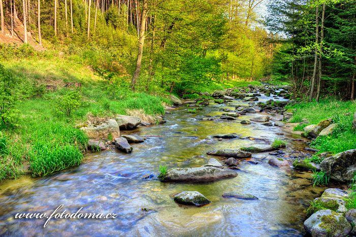 Černý potok, Velká Kraš, okres Jeseník, Olomoucký kraj, Česká republika