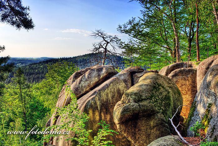 Národní přírodní památka Venušiny misky, Smolný vrch, Velká Kraš, okres Jeseník, Olomoucký kraj, Česká republika