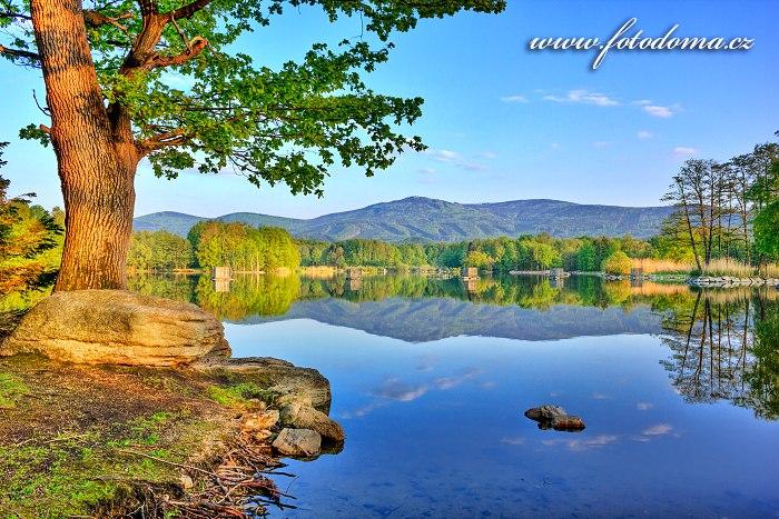 Velký rybník, Žulová, okres Jeseník, Olomoucký kraj, Česká republika