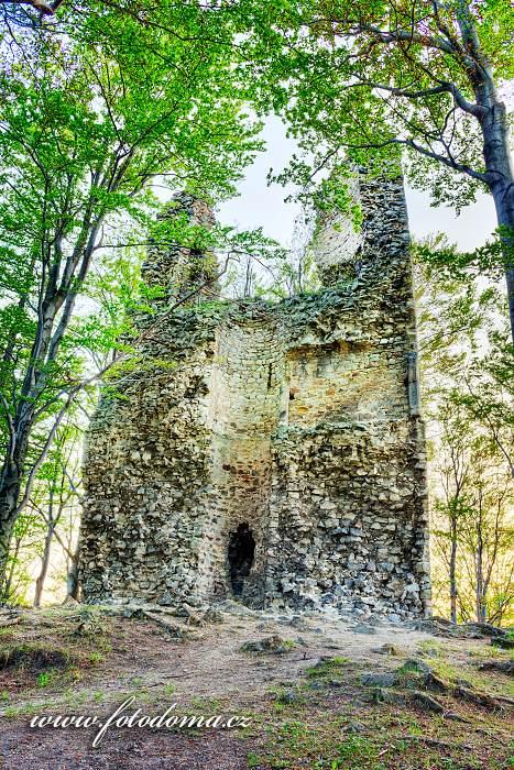 Zřícenina hradu Kaltenštejn na vrchu Hradisko, Černá Voda, okres Jeseník, Olomoucký kraj, Česká republika