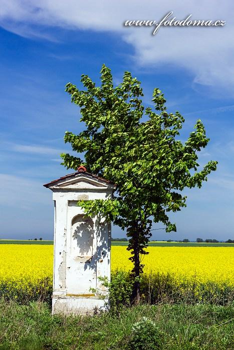 Boží muka v lokalitě Fojtova Kraš, Velká Kraš, okres Jeseník, Olomoucký kraj, Česká republika
